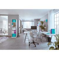 Archivační krabice Leitz Click-N-Store L (A3), purpurová 2