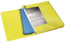 Box na spisy s gumičkou Esselte Colour Ice, žlutá, 25 mm, PP, A4 2