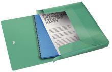 Box na spisy s gumičkou Esselte Colour Ice, zelená, 40 mm, PP, A4 2