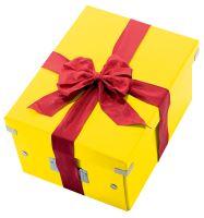 Krabice Click & Store, žlutá, lesklá, A4, LEITZ 9